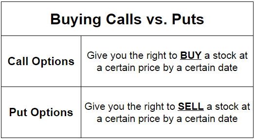 What Are Put and Call Options? Explained With Examples